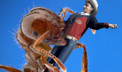 Image of giant ant grabbing Big Tex